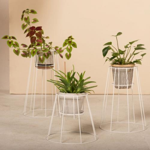 OK DESIGN   Divine Plant Holders