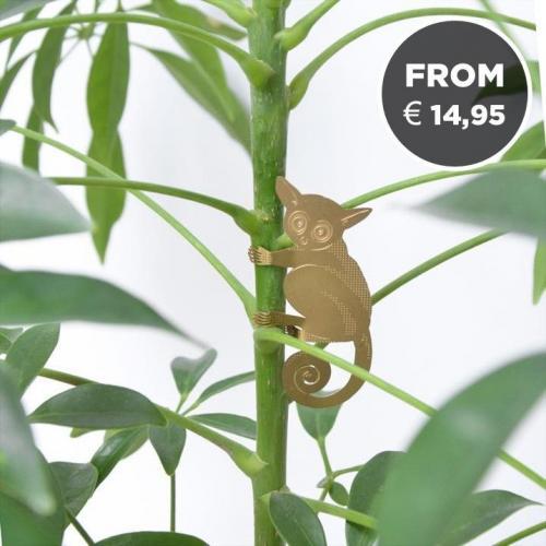 Another Studio | Animalistic Plant Jewellery