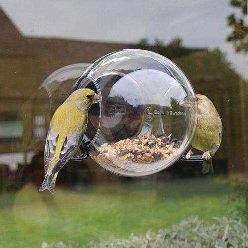 Born In Sweden | Bird feeders & candlesticks