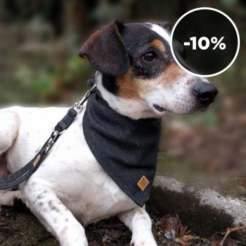 The Furry Crew | Matching Accessories for Dogs & Owners
