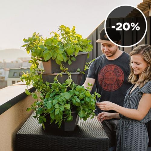Gusta Garden | Grow Potatoes & Strawberries