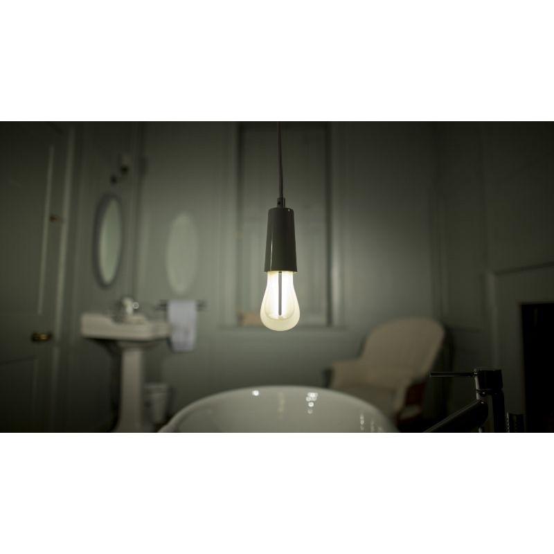 3 Bulbs of Plumen 002