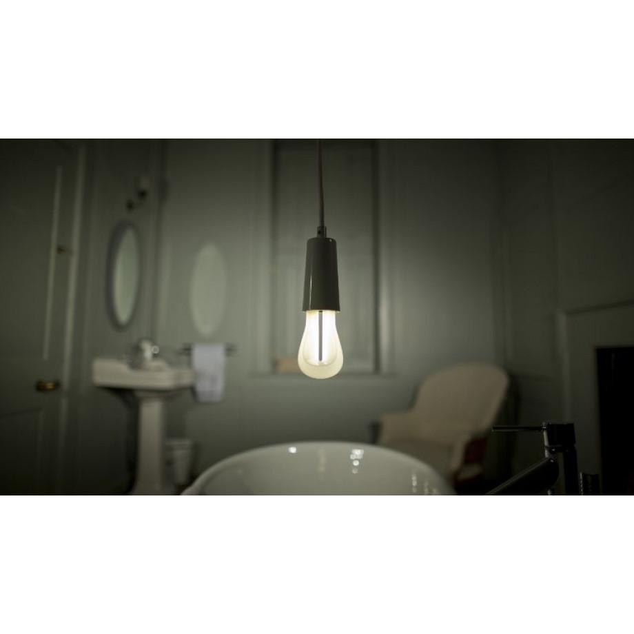 2 Bulbs of Plumen 002
