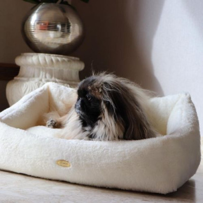Teddy Bear Bed | Ivory