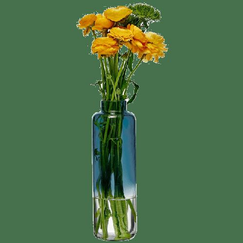 Magnolia Vase 88/280 mm   Blue Top