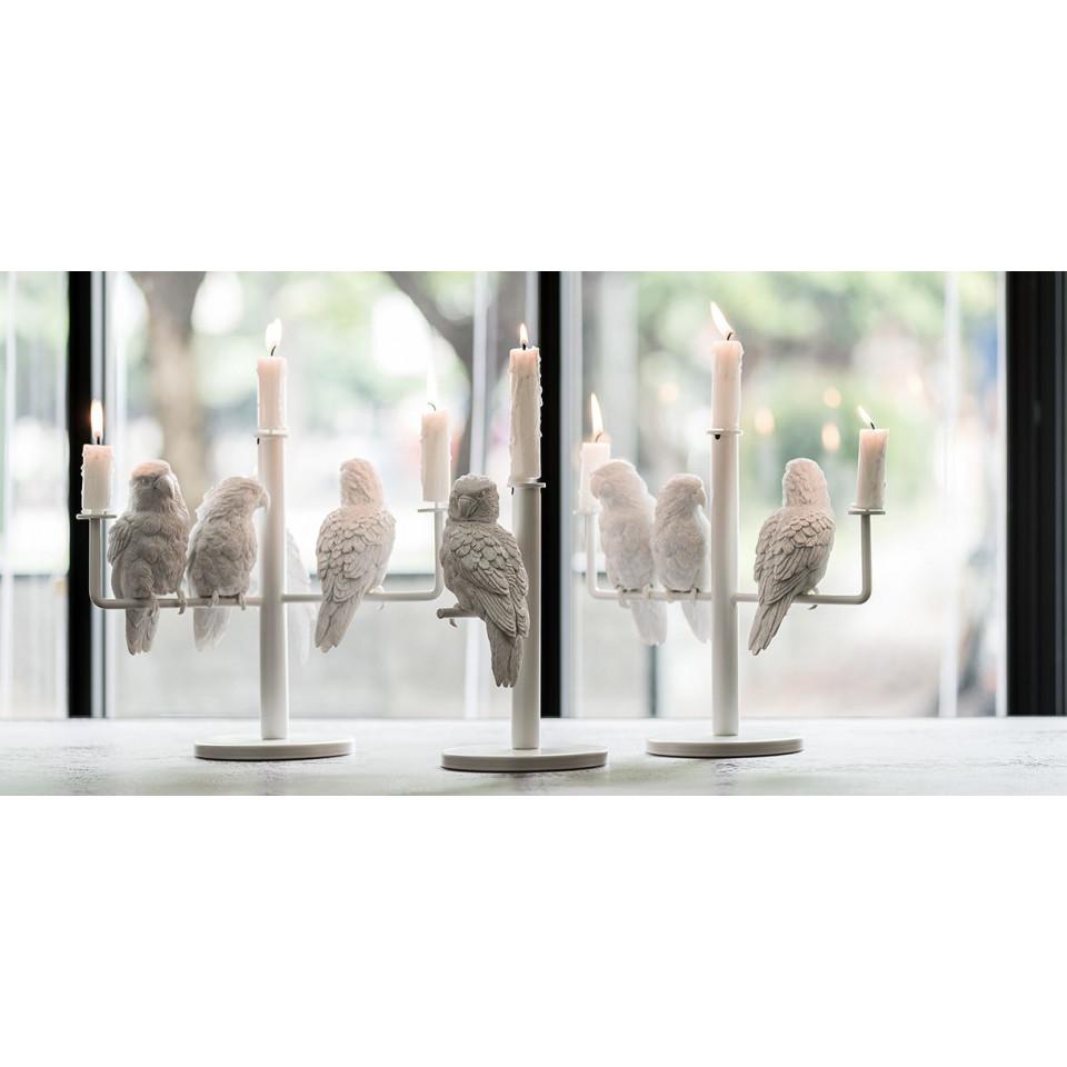 Kerzenständer Papagei X | 3 Papageien