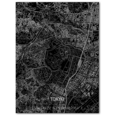 Metal Wall Decoration | City Map | Tokyo-100 x 80 cm