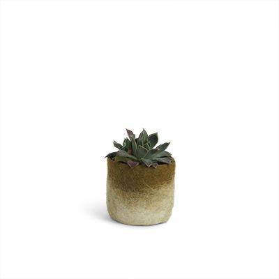 Flowerpot Wool | Olive