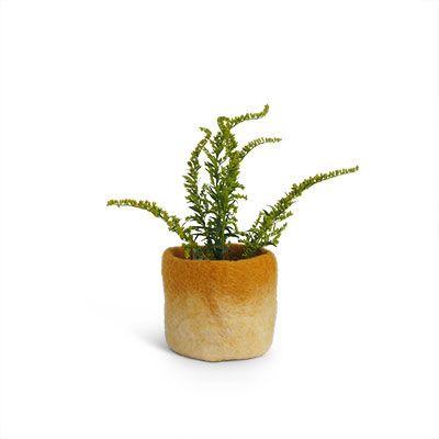 Flowerpot Wool | Mustard