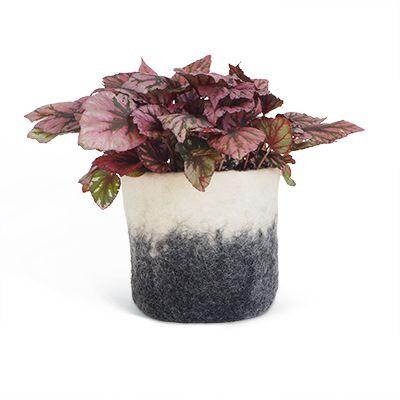 Flowerpot Wool | Dark Grey