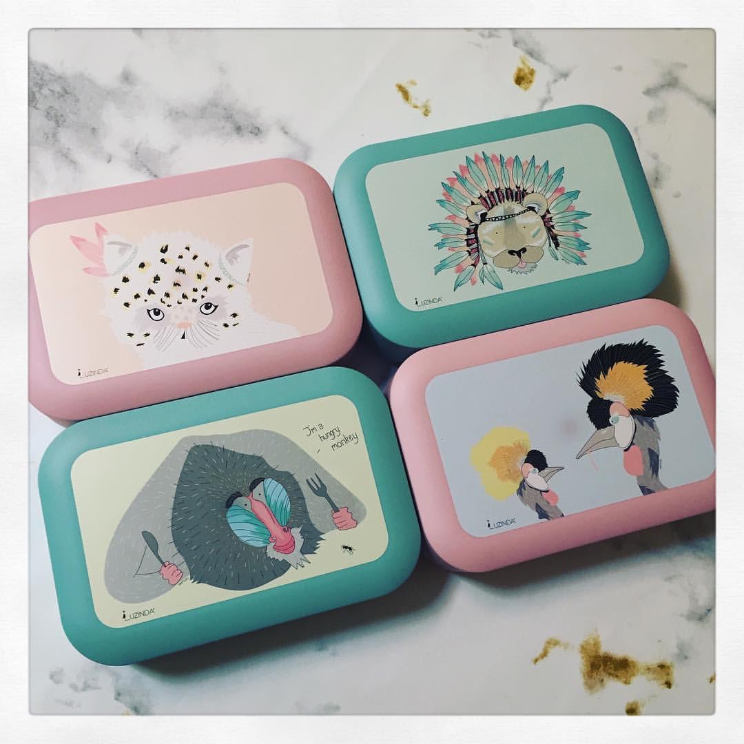 Lunchbox Kitten