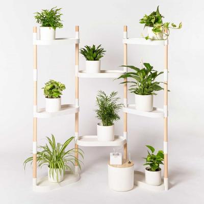 Modularer Ständer mit 8 Tabletts Pflanzenregale | Weiß-8