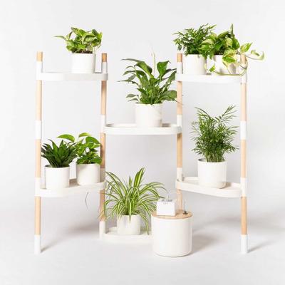 Modularer Ständer mit 6 Tabletts Pflanzenregale | Weiß-6