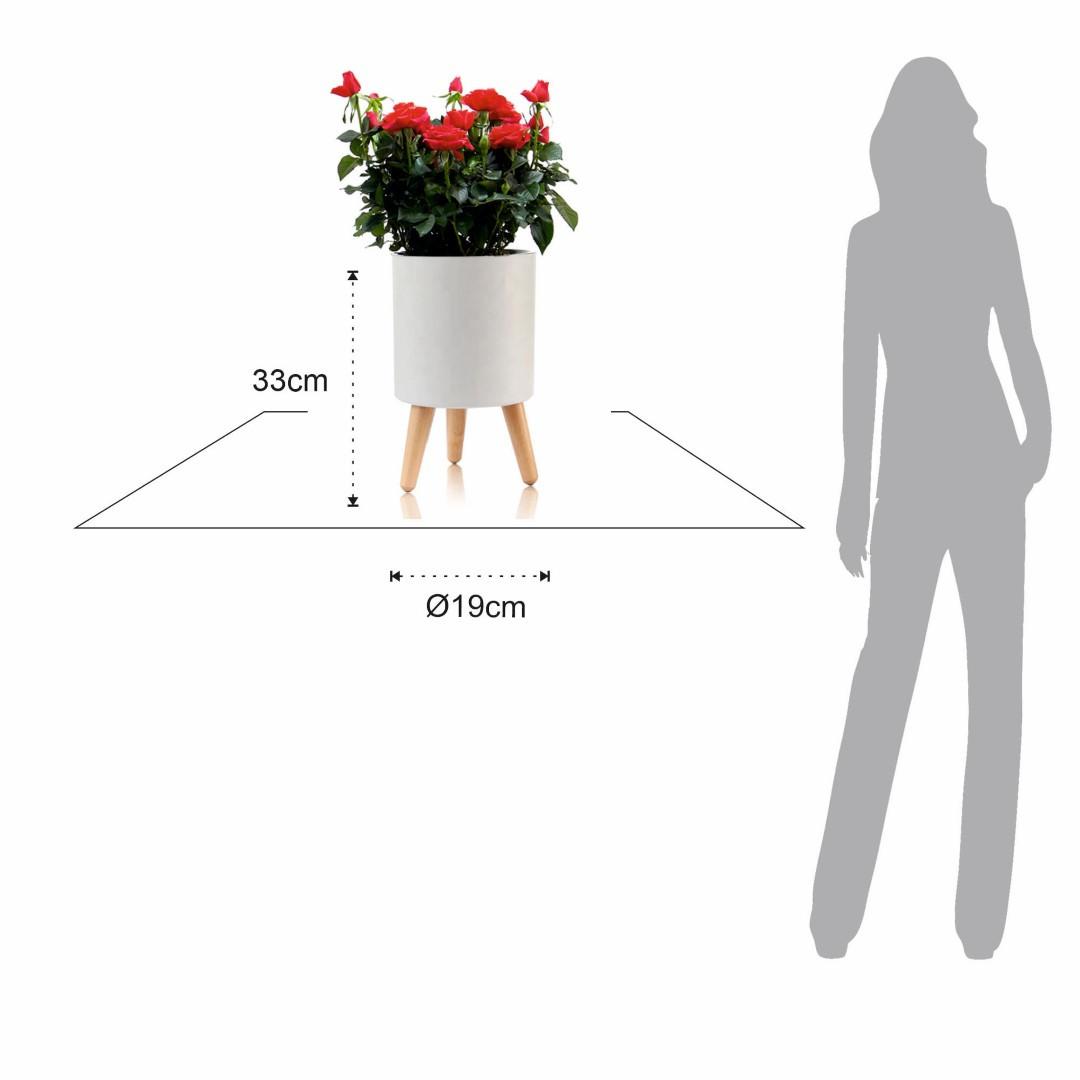 Self-watering Plant Pot Calla A   White