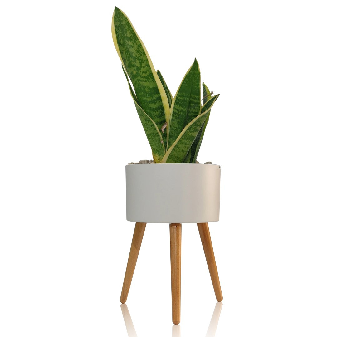 Self-watering Plant Pot Calla C | White