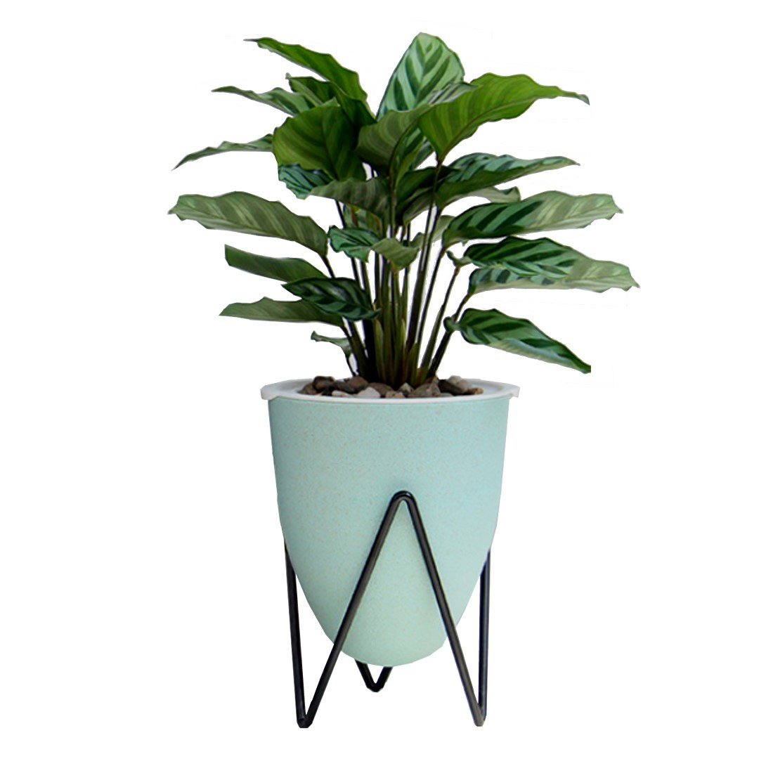 Self-watering Plant Pot Poppy Medium | Green