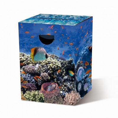 Cardboard Stool | Aquarium