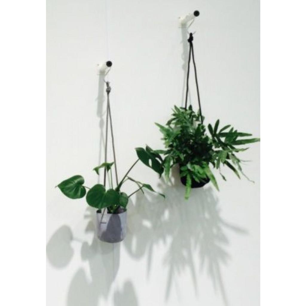 Single Flower Pot   Grey
