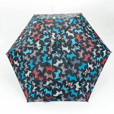 Regenschirmhunde | Schwarz