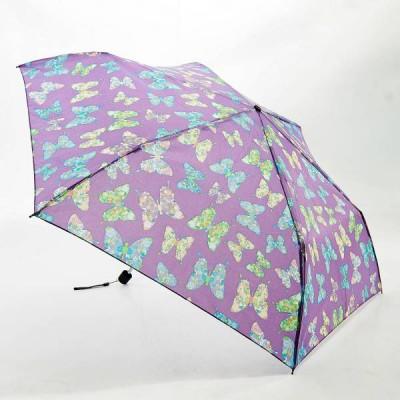 Regenschirm-Schmetterlinge | Violett