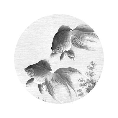 Wallpaper Circle Small Goldfish
