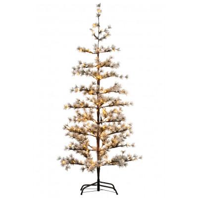 Weihnachtsbaum Alfi