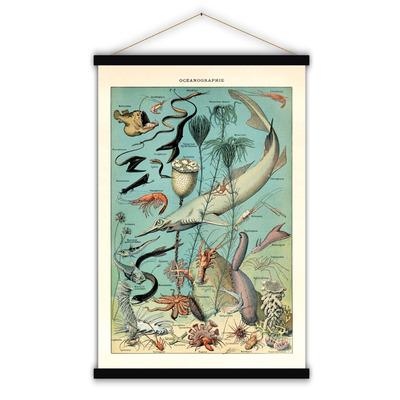 Vintage Poster | Meereskunde
