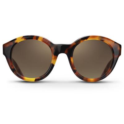 HAVANA GRACE | Sunglasses