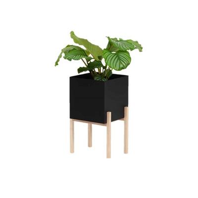 Botanischer Sockel | Schwarz/Esche