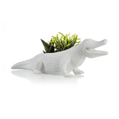 Blumentopf Krokodil | Weiß