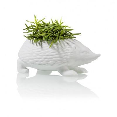Blumentopf Igel | Weiß