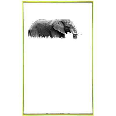 Frame It | Elephant