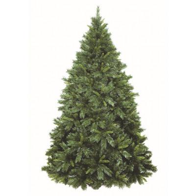 Weihnachtsbaum | Chiavenna