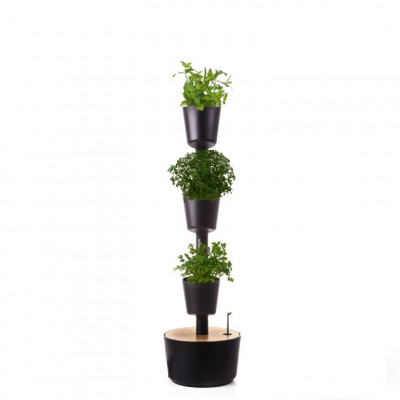 selbstbewässernde vertikale Kräuter-Pflanzgefäße | Schwarz