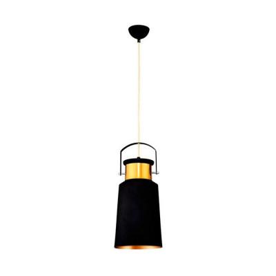 Hanging Lamp #2