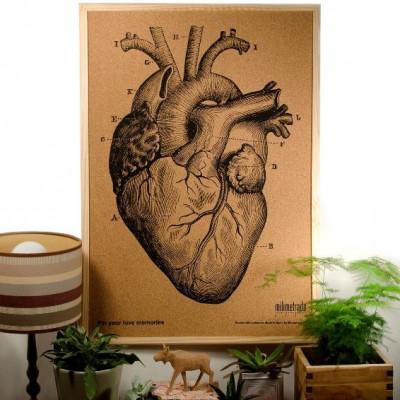 Bulletin Board Kork 70 x 50 cm | Anatomisches Herz