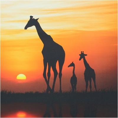 Leinwand | Afrika Sonnenuntergang