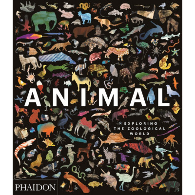 Buch | Animal: Exploring the Zoological World
