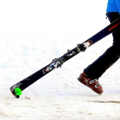 Mini Ski Trolley Skiddi | Grün