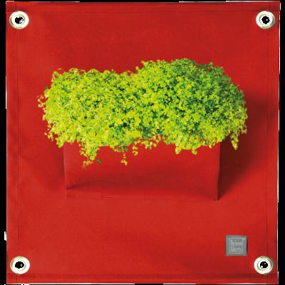Pflanztasche 'Green Pockets' AMMA | Dunkelrot