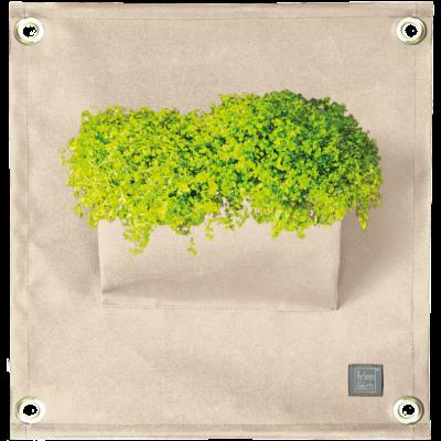 Pflanztasche 'Green Pockets' AMMA | Ivory Weiß