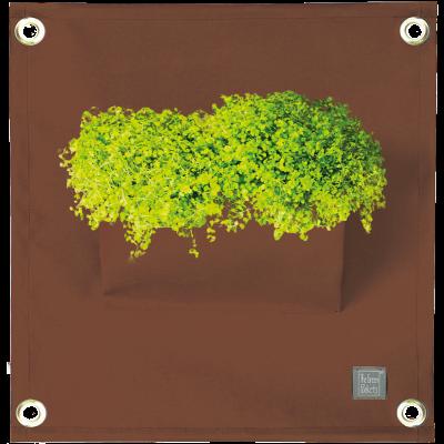 Pflanztasche 'Green Pockets' AMMA | Braun