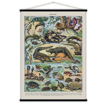 Vintage Poster | Reptilien