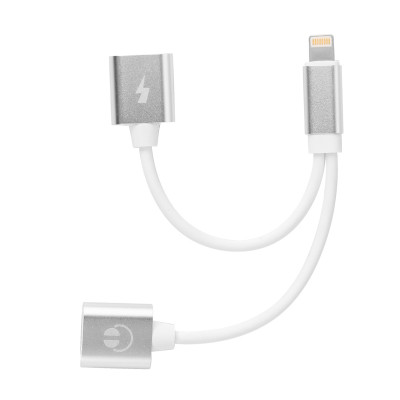 Adapter für IOS 11 AC124   Silberr