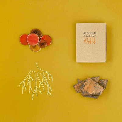 Orange Seed Collection