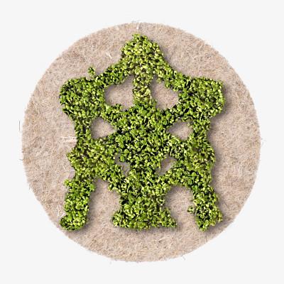 Pflanzensaatgut LEAFLING   Atomium
