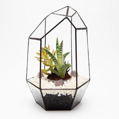 Aztekisches Edelstein-Terrarium - DIY