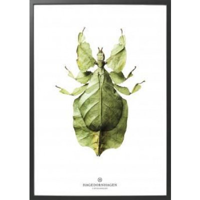Art-Print B10