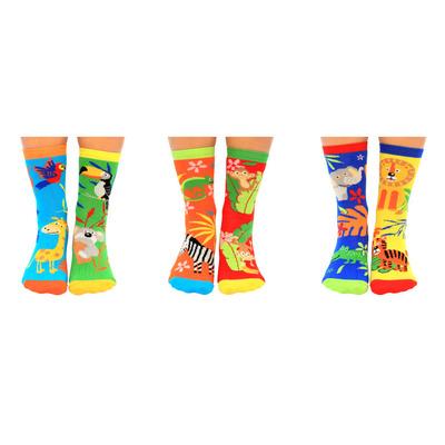 Kinder Geschenkbox 6er Pack Socken Mini Explorer   27-30
