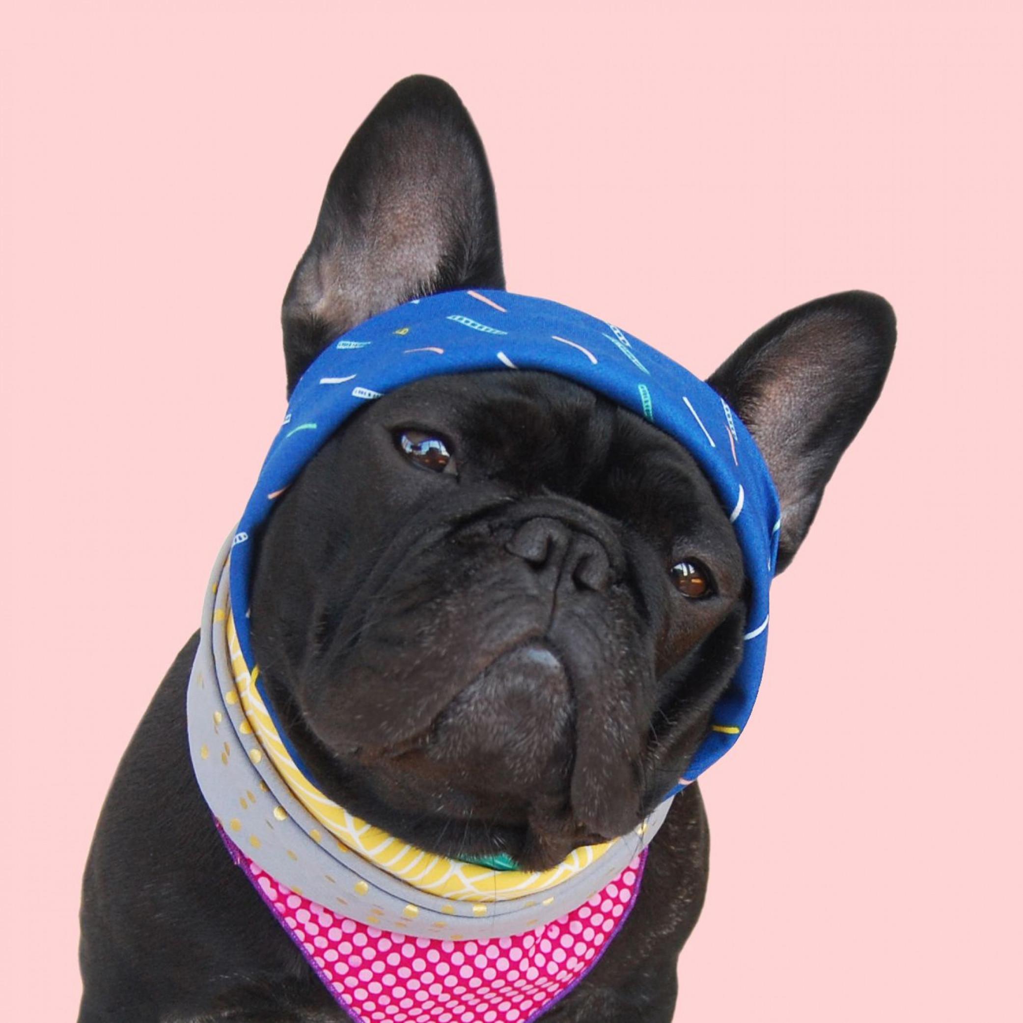 Raining Confetti Dog Bandana